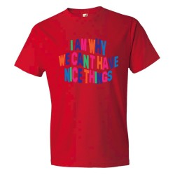 I Am Why We Can'T Have Nice Things - Tee Shirt