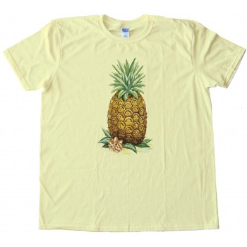Retro Pineapple - Ent - Frient - Stoner - Tee Shirt