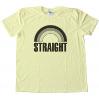 Straight Grey Rainbow - Not Gay - Tee Shirt