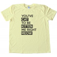 Youve Cat To Be Kitten Me Right Meow - Tee Shirt
