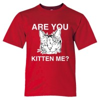 Youth Sized Are You Kitten Me? Cat Person - Tee Shirt