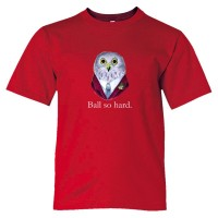 Youth Sized Ball So Hard Owl 4Chan Meme - Tee Shirt